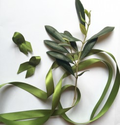 Olive Green Ribbon for Peace